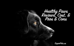 super pets reviews the healthy paws insurance program