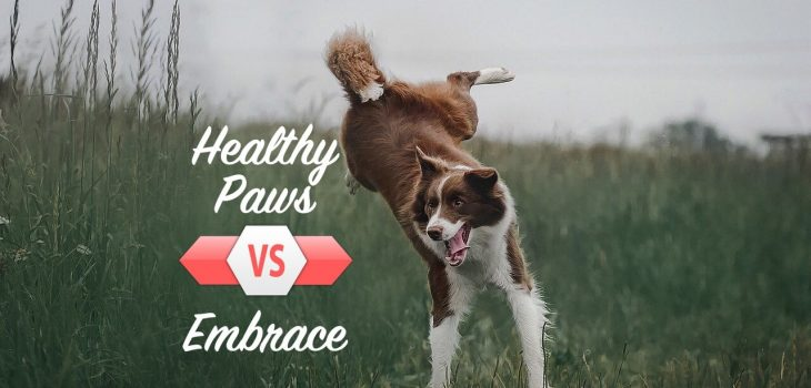 SuperPets compares Embrace pet insurance to Healthy Paws