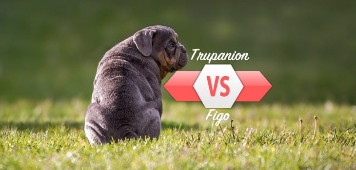 SuperPets compares Trupanion to Figo