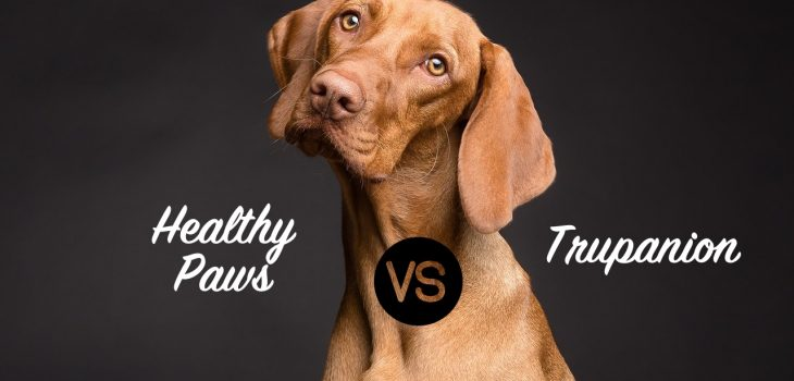 Trupanion vs. Healthy Paws Pet Insurance: An Easy Winner? 1