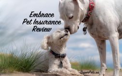 SuperPets reviews Embrace pet insurance
